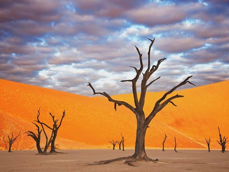 Namib Naukluft نامیبیا
