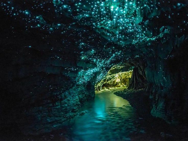 غارهای Waitomo Glowworm در نیوزیلند